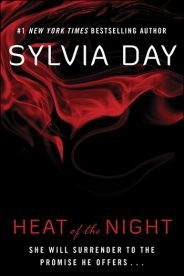 Heat of the Night eBook Cover